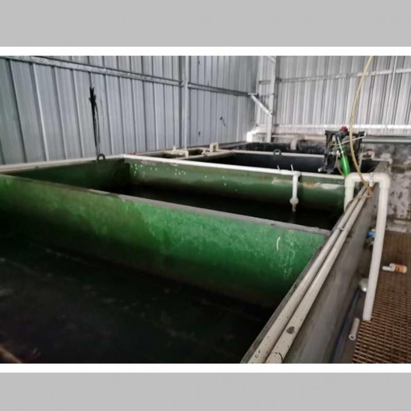 广东丝蕊社化妆品废水工程